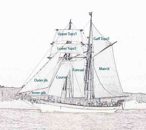 Sail Plan & Layout