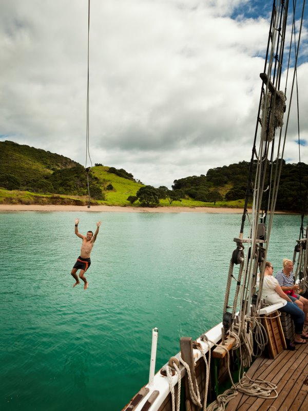 Tucker bungy swing